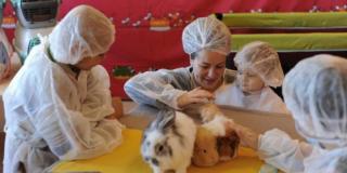 La zoothérapie fait son entrée en secteur hospitalier au Maroc