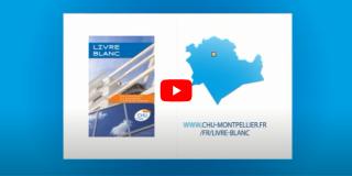 Le CHU de Montpellier vient de publier son  « Livre Blanc » : la vision de sa modernisation à l'horizon 2040